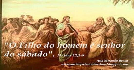 MATEUS 12,1-8 - ESPIGAS 2019